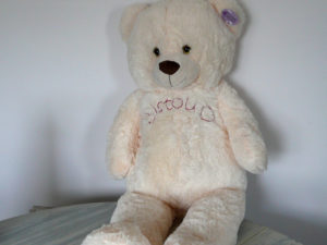 ours en peluche brodé à la main, cadeau sur mesure pour une chérie chanceuse